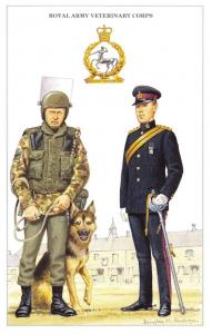Postcard The British Army Series No.71 Royal Army Veterinary Corps Geoff White