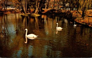 Indiana Winona Lake Swans On Parade Winona Lake Christian Assembly 1962