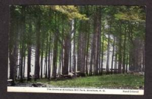 NH Grove Stratham Hill Park NEW HAMPSHIRE POSTCARD PC