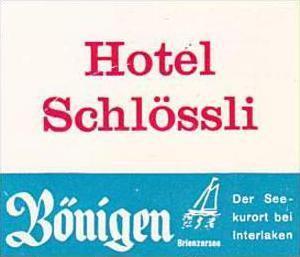 SWITZERLAND BOENIGEN HOTEL SCHLOESSLI VINTAGE LUGGAGE LABEL
