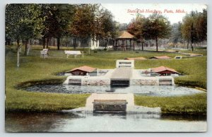 Paris Michigan~Going to See State Fish Hatchery~Gazebo~Park Benches~1908 PC