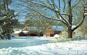 Winter on Long Island Long Island NY Unused