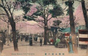 Japan Yokohama Cherry Blossoms Park Hand Tinted 06.98