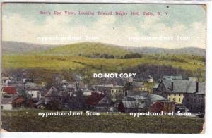 Bird's Eye View, Tully NY