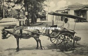 indonesia, JAVA, Native Javanese Horse Cart, Sados (1910s)