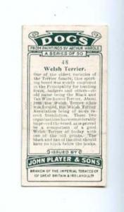 166927 WELSH TERRIER WARDLE Player CIGARETTE card ADVERTISING