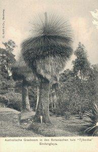 Indonesia Botanische Tuin Tjibodas Sindanglaja 04.84