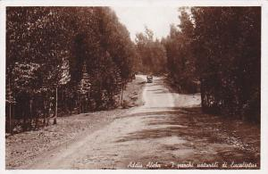 RP: Addis Abeba , 20-30s ; i. parchi naturali di Eucaliptus