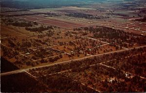 Florida Marion County Aerial View Rainbow Acres