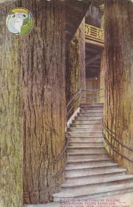 SEATTLE, Washington; Corner on the Forestry Building, Alaska-Yukon Pacific Ex...