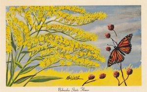 Nebraska State Flower & Monarch Butterfly , 40-50s