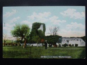 Kent WESTENHANGER Fair Rosamond's Bower c1906 Postcard by Hartmann