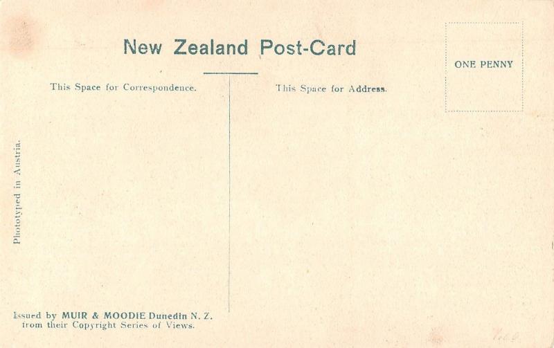 Wai-O-Tapu New Zealand birds eye view Devils Bridge antique pc Z16018