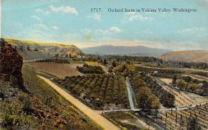 Yakima Valley Washington~Birdseye Orchard Scene~Sign on Gravel Entrance~1910 PC
