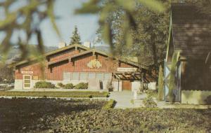 ASTI, California; 40-60s; Wine Tasting Room, Italian-Swiss Colony Winery