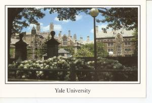 Postal 039646 : Yale University. New Haven Connecticut
