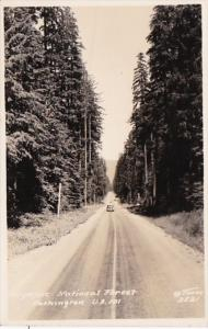 Washington Olympic National Forest U S Highway 101 Real Photo