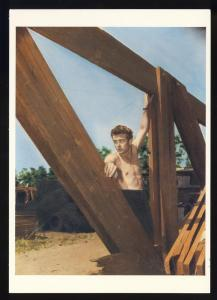 Actor James Dean Postcard, Bare Chested On Wooden Frame