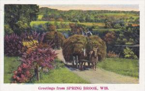 Wisconsin Greetings from Spring Brook