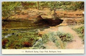 Burlington Iowa~Crapo Park~Blackhawk Spring~Rocky Ledge Over Opening~1909 PC