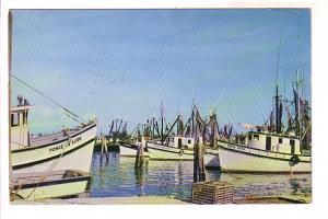 Shrimp Boats Resting in Florida Harbor