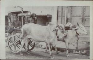 India Native Men Bullock Cart c1910 Real Photo Postcard dcn