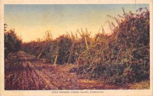Yakima Valley Washington~Rutted Dirt Road Thru Apple Orchard~1933 Litho Adv PC