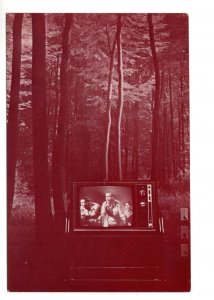 Photographic Art, Television in Forest by Ben Mark Holzberg 1979 Toronto Ontario