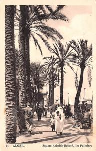 Alger Algeria, Alger, Algerie Square Aristide Briand, Les Palmiers Alger Squa...
