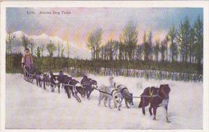 Alaska Dog Team