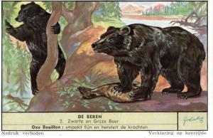 VICTORIAN TRADE CARD, LIEBIG BEAR SERIES (5 CARDS).