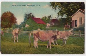 Savannah NY - Farm Scene - Cows