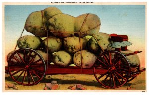 Exaggeration  A load of Potatoes from Maine