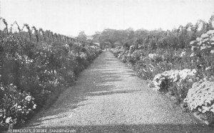 Sandringham Herbacious Border Promenade Fountain Postcard