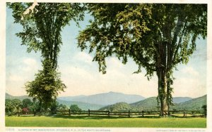 NH - Intervale. Mt. Washington in the Distance