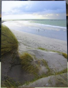Scotland Windy day Big dune Paible North Uist - posted