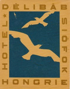 Hungary Siofok Hotel Delibab Vintage Luggage Label sk3660