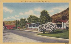 Nevada Lake Mead Lodge Near Boulder City Curteich