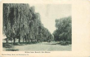 C-1905 Willow Lane Roswell New Mexico Peyton Drug Postcard undivided 13475
