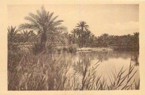 Algeria Temacine au bord du lac  vintage Postcard