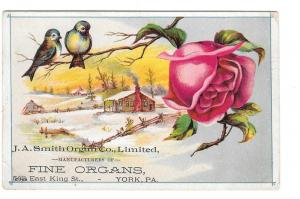 Victorian Trade Card J A Smith Organ Co York Pa Blue Birds
