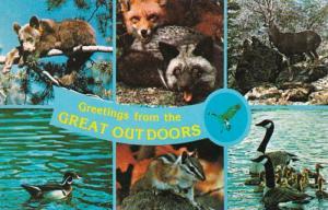 Greetings From The Outdoors Bear Cub Fox Buck Deer Wood Duck Chipmunk & Canad...