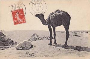 ORAN , PU-1915 , Algeria , La Priere du Chamelier