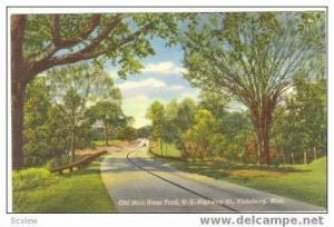Old Man River Trail,US HWY 61, Vicksburg, Mississippi, 30-40s