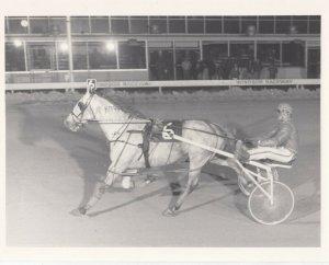 WINDSOR Raceway Harness Horse Race , 1960s-70s ; SMOKEY SMOG Wins