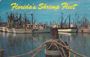 The Shrimp Fleet Florida