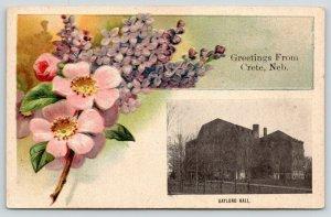 Crete Nebraska~Gaylord Hall~Bouquet of Embossed Flowers~c1910 Postcard