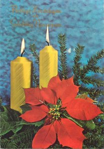 Postcard Greetings candles flowers tree branch