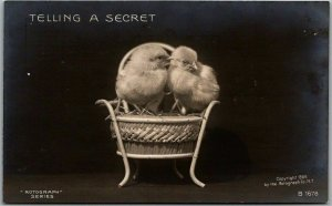 1900s RPPC Rotograph Photo Postcard TELLING A SECRET Baby Chicks #B1678 UNUSED
