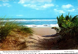 New York Long Island Jones Beach State Park Sand Dunes